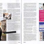saljaren-3-2012-sid-8-9